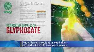 Weed-Killing Ingredient Blamed For Cancer, Found In Oat Products [Video]