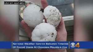 Government Wireless Alerts Don't Warn About Severe T-Storms [Video]