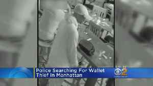 Police Search For Wallet Thief In Manhattan [Video]
