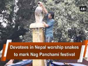 Devotees in Nepal worship snakes to mark Nag Panchami festival [Video]