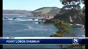 Point Lobos State Park is being loved to death [Video]