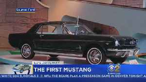 Ed's Driveway: 1965 Ford Mustang [Video]