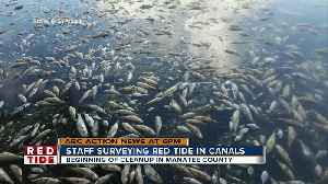 Manatee County plan for red tide clean-up [Video]