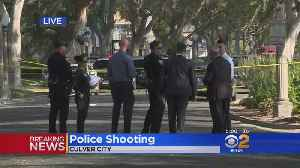 Knife-Wielding Suspect Fatally Shot By Police [Video]