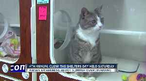 4th Annual Clear the Shelters Day Held Saturday [Video]