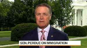 Sen. David Perdue on Immigration, Fed Policy and Tariffs