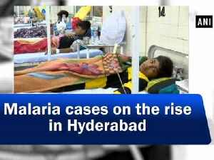 Malaria cases on the rise in Hyderabad [Video]