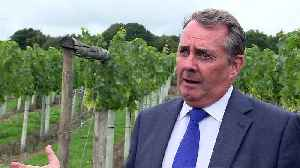 Dr Fox: Export strategy needed regardless of Brexit [Video]