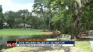 Alligator kills woman trying to protect her dog at resort [Video]
