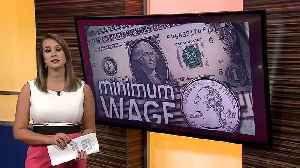 Appeals Court orders minimum wage proposal onto the November ballot [Video]