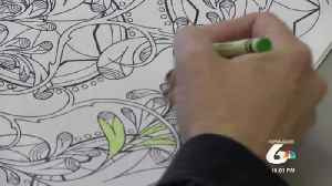 Local woman pays it forward with published coloring book [Video]