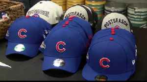 Suiting Up in Cubbie Blue [Video]