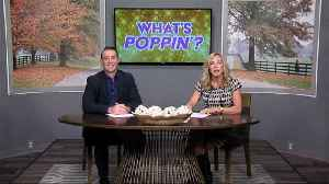 What's Poppin' 11-14 [Video]