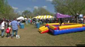 New Bag Policy at Brownsville Festival [Video]