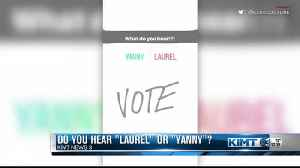 Laurel or Yanny?! [Video]