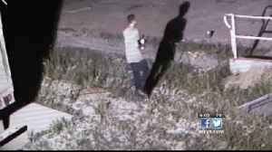 Dumpster Thieves Caught On Camera [Video]