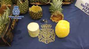 Pina-coke-lada! Madrid police discover 67kg of cocaine in pineapple [Video]