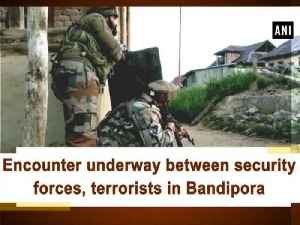 Encounter underway between security forces, terrorists in Bandipora [Video]