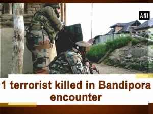 1 terrorist killed in Bandipora encounter [Video]