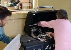 Ballsy Grandmother Wrestles Snakes Off a Barbecue in Brisbane, Queensland [Video]