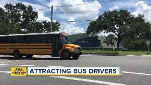 Polk drops education requirement for bus drivers [Video]