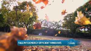 Fall Into Energy Efficient Windows with Lifetime Windows and Siding [Video]