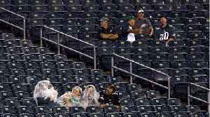 NFL Kickoff Game Delayed For 'Severe' Weather [Video]
