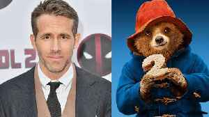 Ryan Reynolds Gets Into Foul-Mouthed Feud with Paddington Bear [Video]
