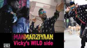 Vicky Kaushal goes WILD in 'Manmarziyaan' [Video]