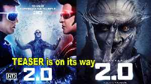 """Buckle Up 