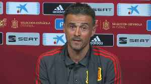 Spain coach says team behaviour 'exemplary' [Video]