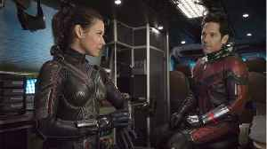 Evangeline Lilly Shares Photo From Costume Fitting For 'Ant-Man And The Wasp' [Video]