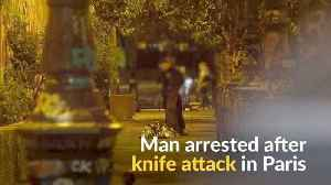 Man arrested after seven wounded in Paris knife attack [Video]