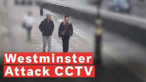 CCTV Shows Westminster Attack Victim's Final Moments [Video]