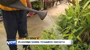Jailed youths plant garden, donate fruits and vegetables to Cleveland homeless shelter [Video]