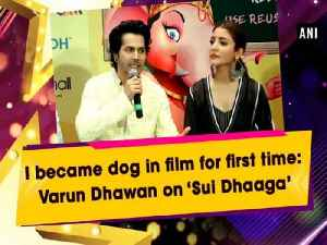 I became dog in film for first time: Varun Dhawan on 'Sui Dhaaga' [Video]