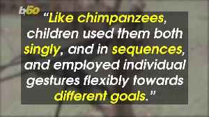 'Children are Just Tiny Apes' Say Researchers Who Found Toddlers Share This With Gorillas and Chimps [Video]