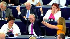 EU Lawmakers Approve Controversial Copyright Law [Video]