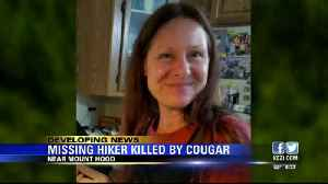 Deputies: Missing hiker killed by cougar near Mount Hood [Video]