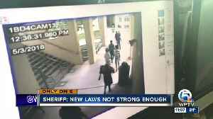 New school laws not strong enough [Video]