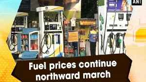 Fuel prices continue northward march [Video]