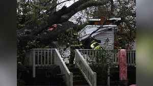 Mom, Infant Killed When Tree Falls on Home During Hurricane Florence [Video]