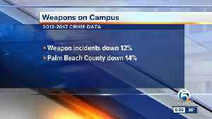 Weapon incidents down 14% in Palm Beach County between 2012 and 2017 [Video]