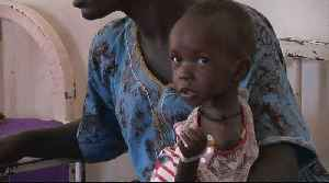 Millions in South Sudan surviving on food aid [Video]