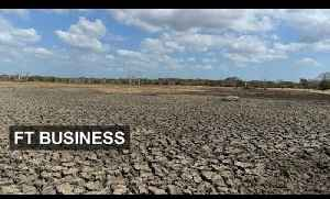 Bank prods insurers about climate plans [Video]