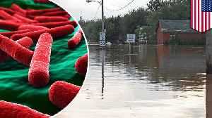 News video: Diseases you could catch from contaminated flood waters