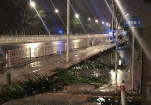 Typhoon Mangkhut Winds Leave Trees Astrew in Zhuhai [Video]