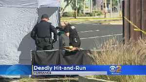 Bicyclist Killed In Torrance Hit-And-Run [Video]