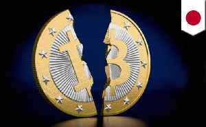 Mt. Gox payouts could trigger Bitcoin market crash [Video]