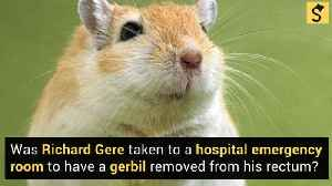 Richard Gere and the Gerbil [Video]